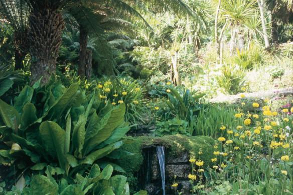 Englischer Garten Pflanzung