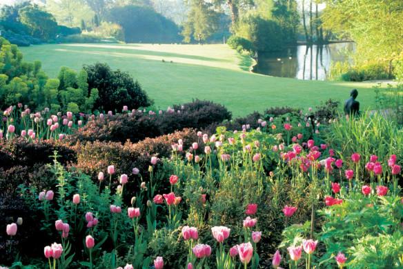 Blumen Garten England