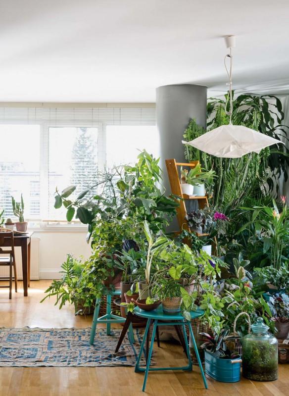 urban jungle book interior ideas styling plants