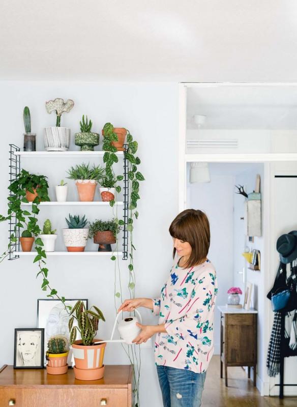 urban jungle interior book trend 2016 wall plant