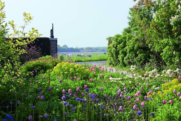 Cottage-Beet mit Blick in die Landschaft (Einfache späte Tulpe