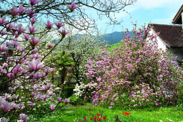 Traumhafte Gärten Schweiz