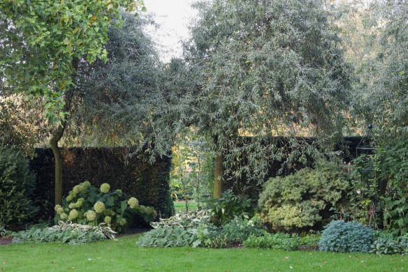 Grüne Gärten Gartengestaltung Christa Hasselhorst