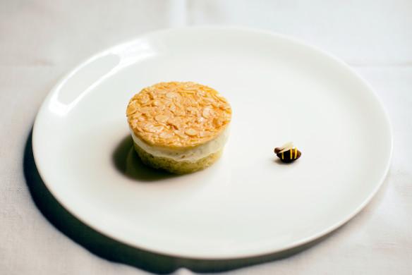 Nachspeisen - Bienenstich