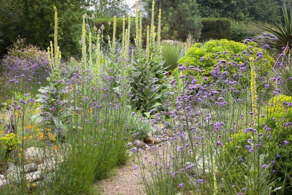 Blühende Beete Callwey Gartenbuch