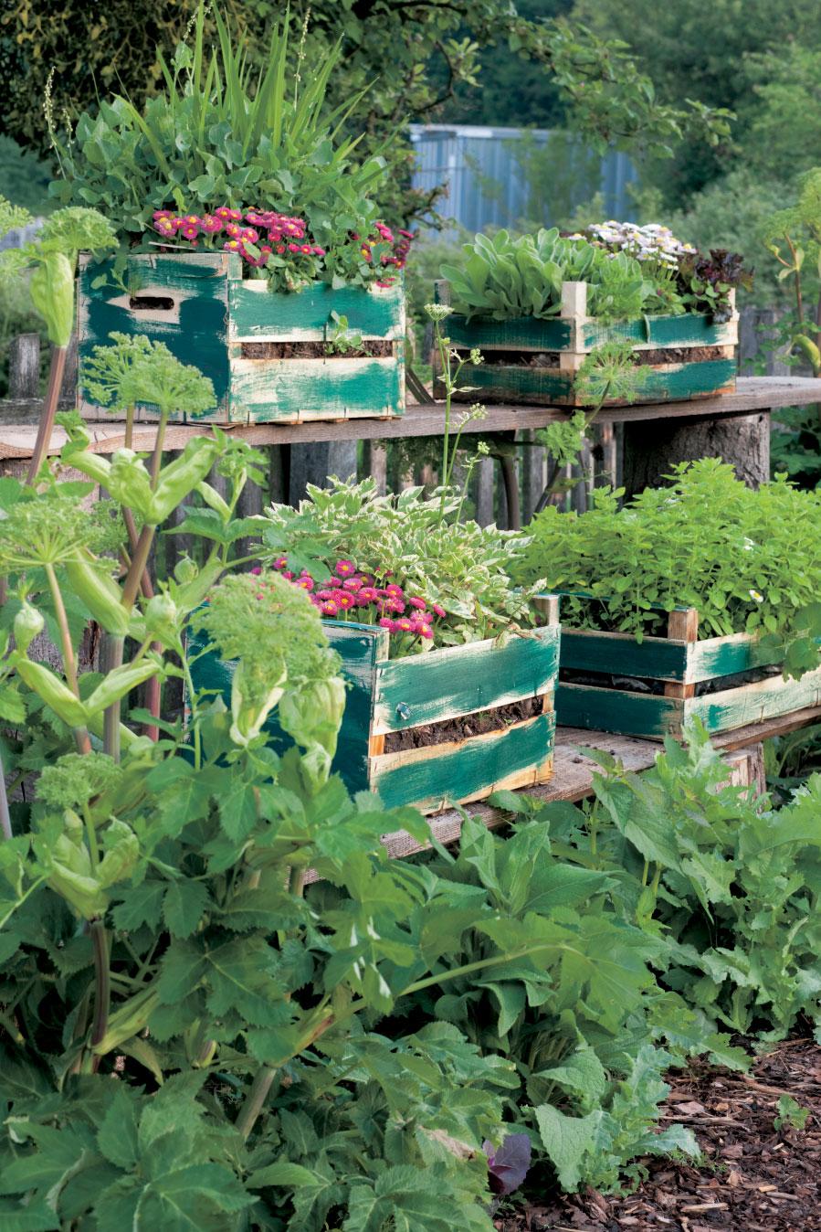 Gartengestaltung mit hochbeet fr hjahrsprogramm 2016 for Gartenbeispiele gestaltung