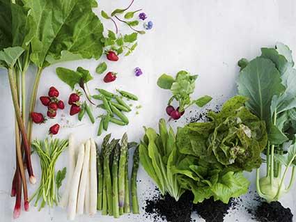 Barbara Bonisolli: Das vegetarische Kochbuch, Frühling