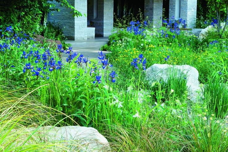 Mit pflanzen gestalten callwey for Garten mit pflanzen gestalten