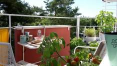 Mein Lieblingsplatz Balkon selbstgezogene Tomaten