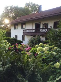 Mein Lieblingsplatz Bauerngarten Hortensien Farn