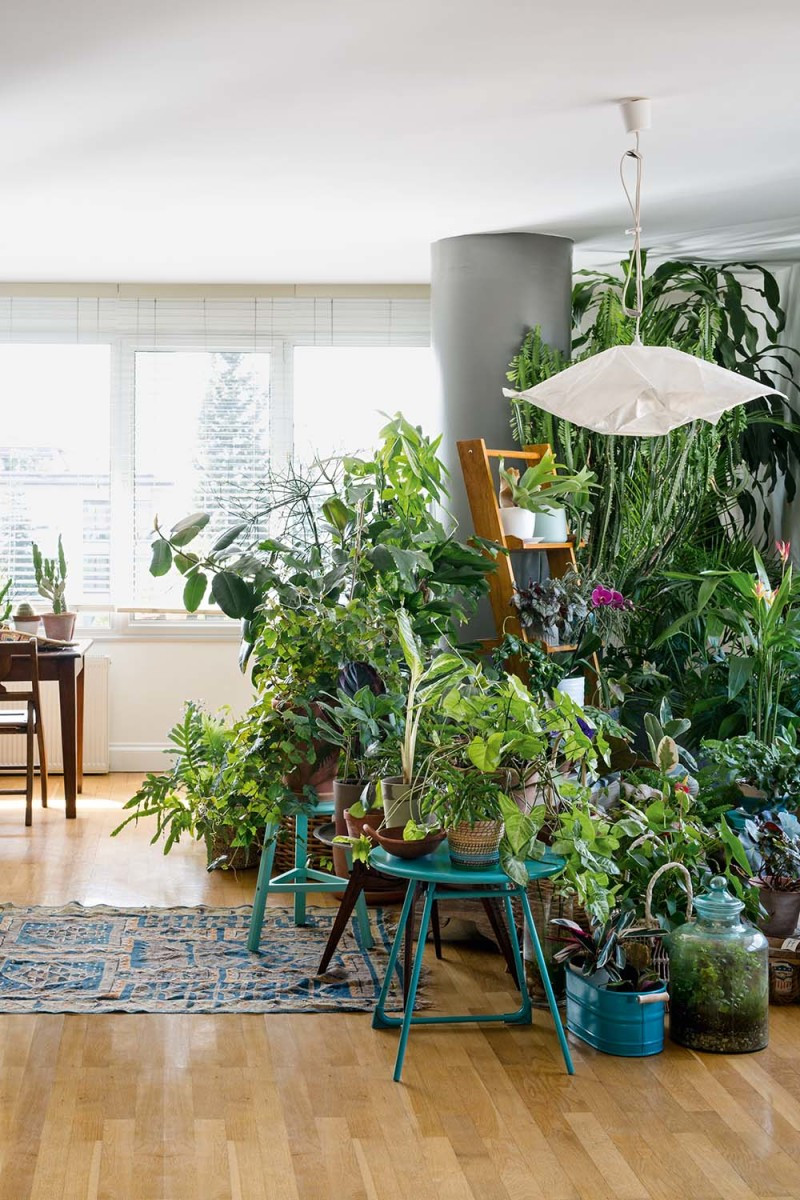 Urban jungle interior living and decorating with plants for Interior designs with plants