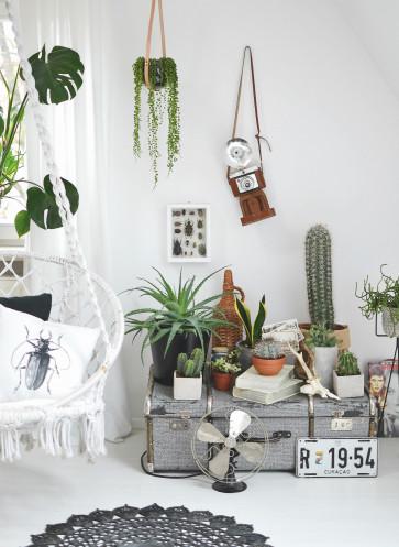 herbstauftakt callwey herbstprogramm 2016 b cher. Black Bedroom Furniture Sets. Home Design Ideas