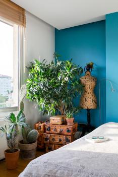 Wohnen in Grün Urban Jungle Wohnbuch Pflanzen Zimmer