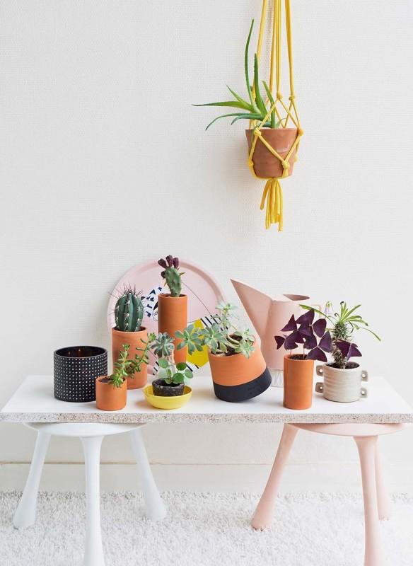 Wohnen in Gruen_Judith-de-Graaff-plantshelfieWEB