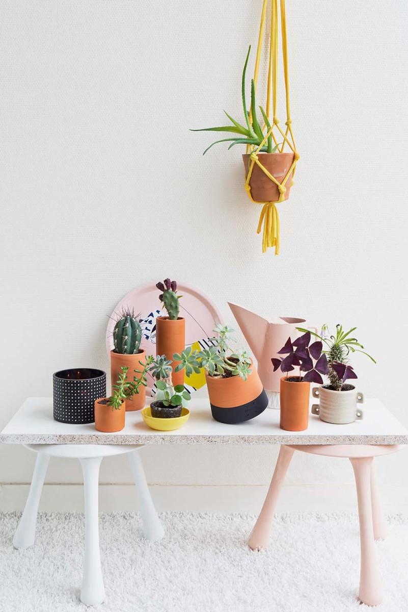 wohnen in gr n leben und wohnen mit pflanzen urban jungle. Black Bedroom Furniture Sets. Home Design Ideas
