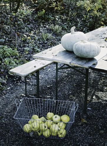 Garten winterfest machen Barbara Bonisolli 100 Rezepte aus meinem Garten Herbststimmung