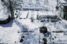 Garten winterfest machen Barbara Bonisolli 100 Rezepte aus meinem Garten Winterschlaf