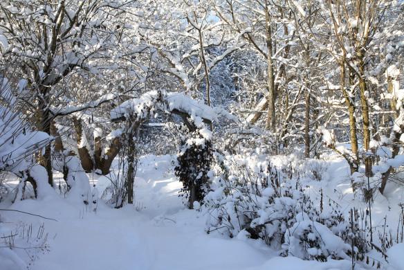 Traumhafte Landgärten 156-157_wolf_winter-16