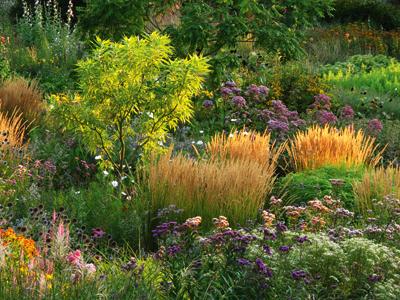 Romantische Gartenreisen in Deutschland Hermannshof Gräser und Stauden WEB