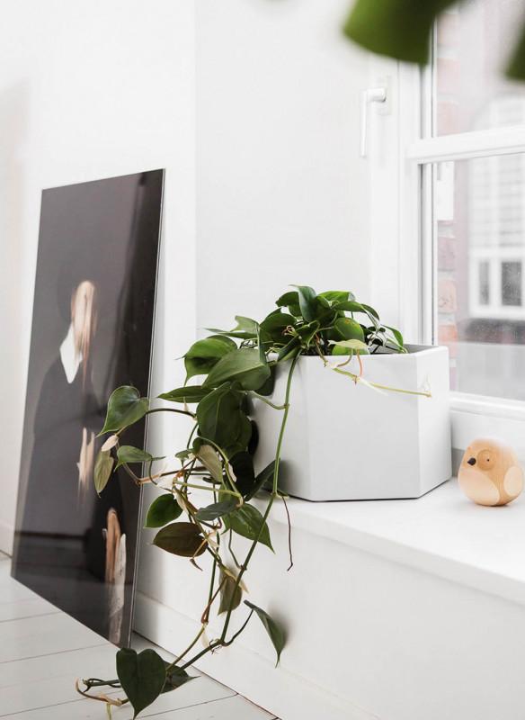 Best of Interior Callwey Wohntrends Loft Pflanzen Deko
