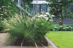 Gärten des Jahres Callwey Gartenbuch Federgras Eisenkraut