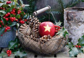 wintertraum weihnachtszeit deko