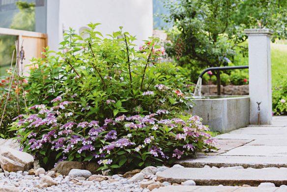 Gärten des Jahres 2018_Bad Wiessee (23)WEB