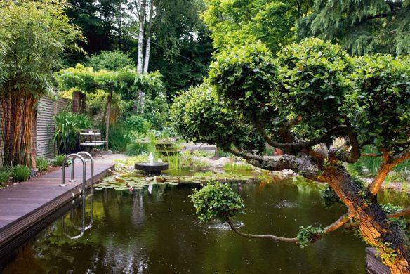 Gärten des Jahres 2018_Garten Grevenborich