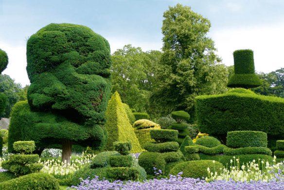 Gartenkunst Sträucher England Birne, Levens Hall, P2020835WEB