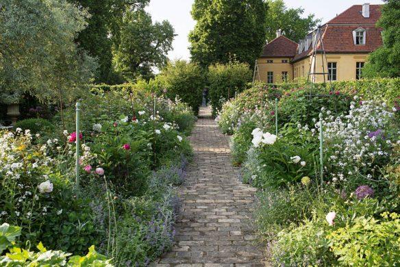 Garten mit Rosen und Begleitpflanzen Schloss Kleßen