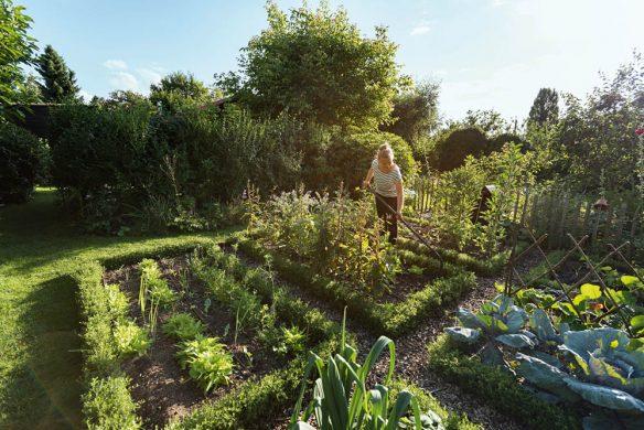 Garden Girls Gartenbuch Callwey Beete anlegen Schrebergarten