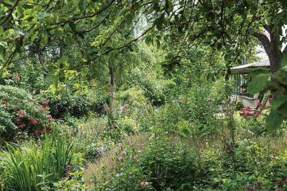 Garden Girls Gartenbuch Callwey Blumen wilder Garten am See