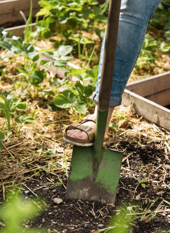 Garden Girls Gartenbuch Callwey Laube gärntern Spaten