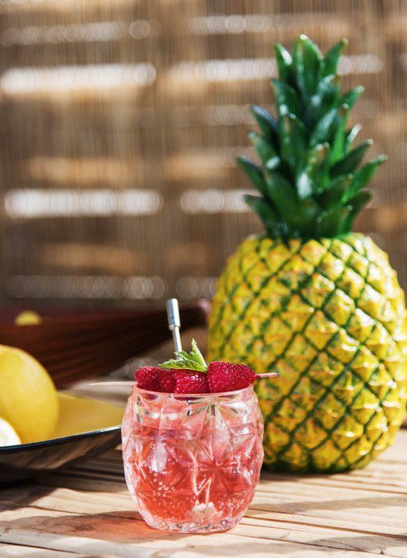 Garden Girls Gartenbuch Callwey Rezept Cocktail Ananas Himbeere