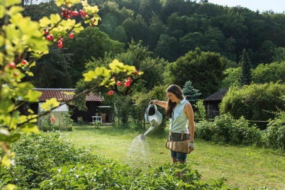 Garden Girls Gartenbuch Callwey Schrebergärtnern Blumen giessen
