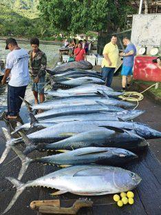 Nuku Hiva Fischmarkt