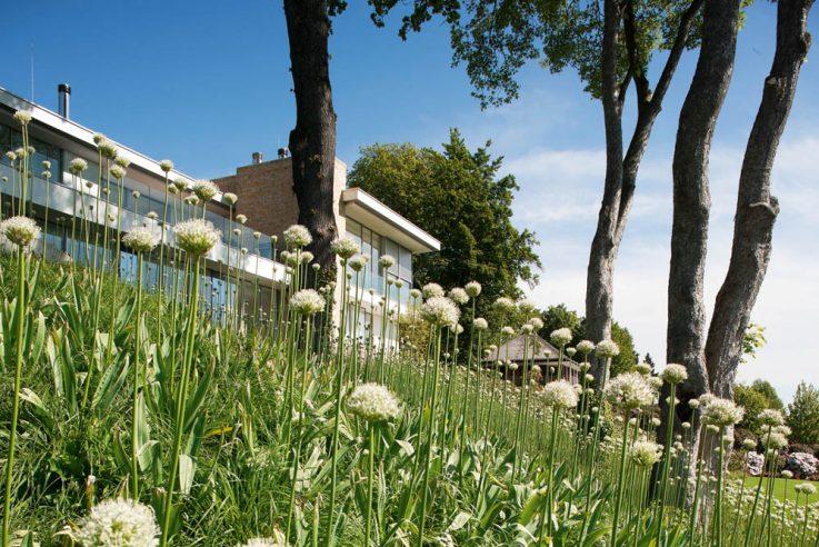 preistraeger-gaerten-des-jahres-2018-auszeichnung-daldrup-stephan-maria-lang-massenpflanzung