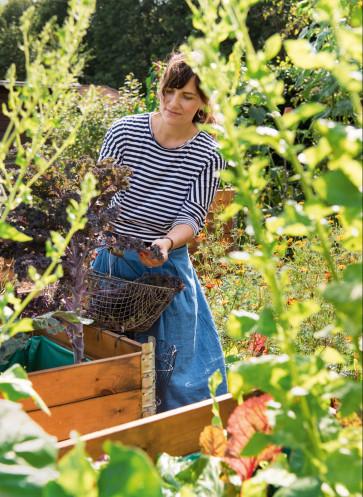 garden girls gartenbuch callwey gärtnern hobby