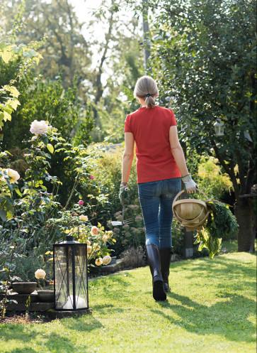 garden girls gartenbuch callwey Gartenarbeit Schrebergarten