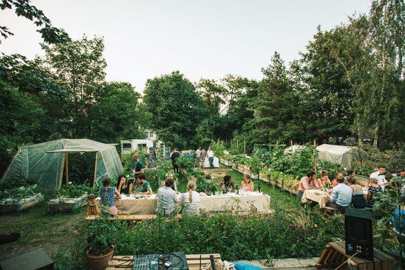 Urban Gardening_AnnaLinde Garten - Leipzig