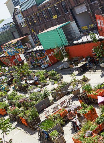 Urban Gardening_CARLsGARTEN