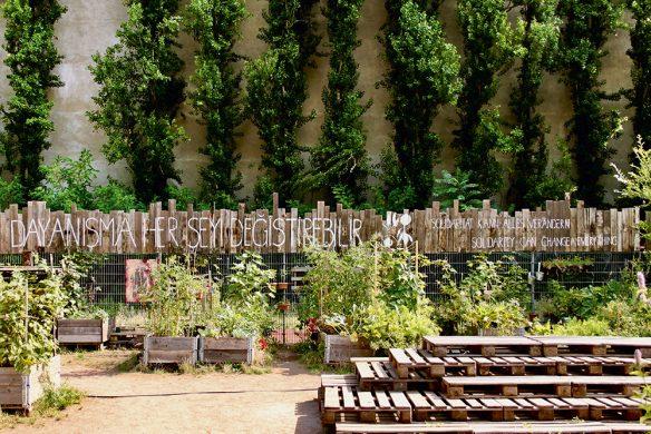 Urban_Gardening_himmelbeet