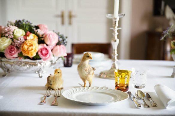 vom glück mit hühnern zu leben_elizabethbayern2