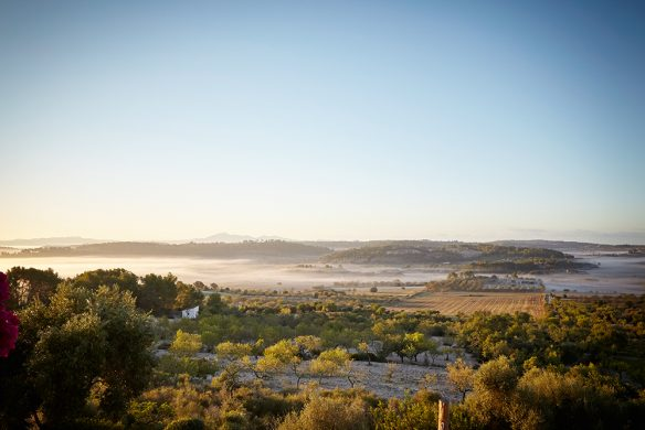 Mallorca_Bureaux_House_Oeteman_3
