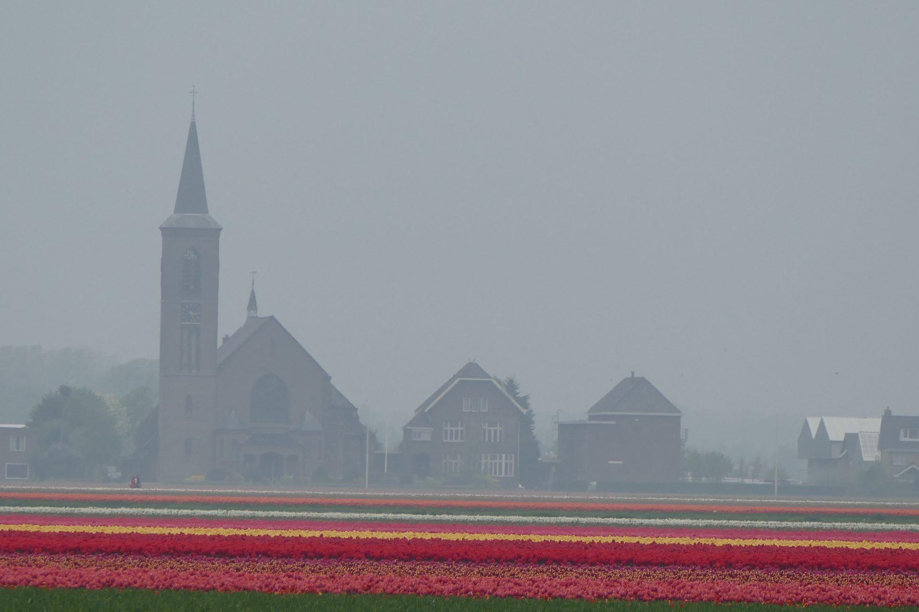 Ein Besonderer Tag In Den Niederlanden Callwey