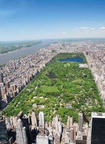 centralpark-newyorkcity-callwey