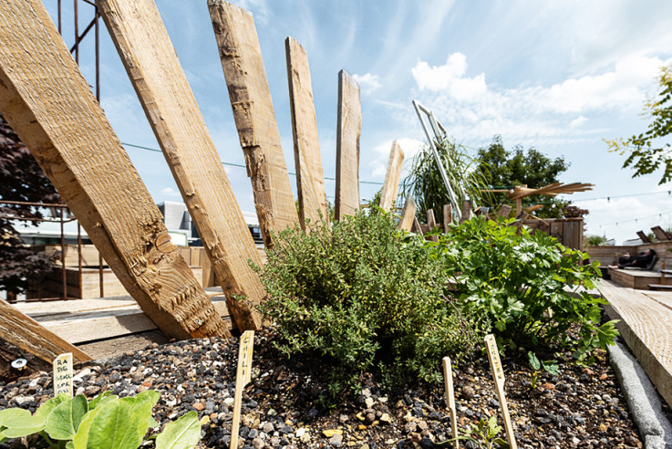 callwey-[urban-gardening]-[dachbalkon]