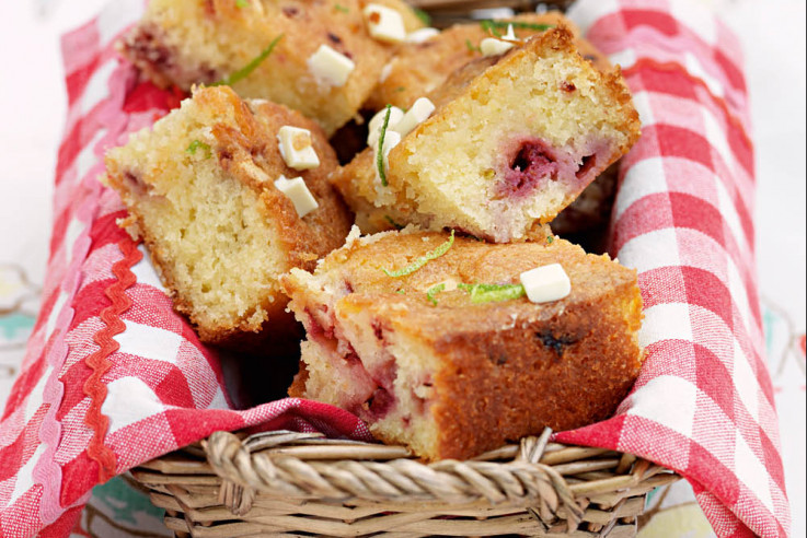 callwey-tag-des-himbeerkuchens-drizzle-cake
