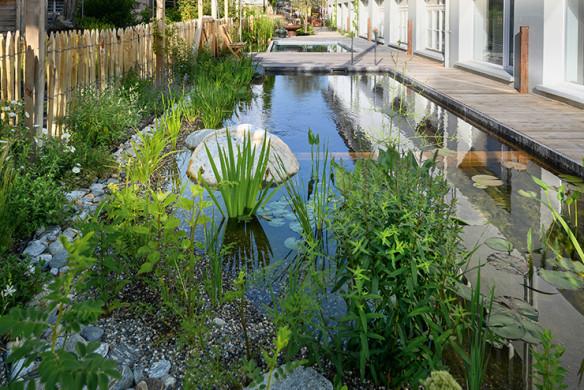 Gärten des Jahres 2020_Lösungen_Pools und Schwimmteiche_Salamander Naturgarten