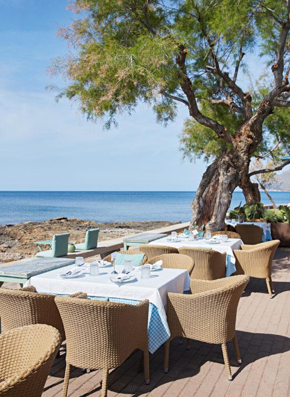 Zu Gast auf Mallorca_SabineHagstroem